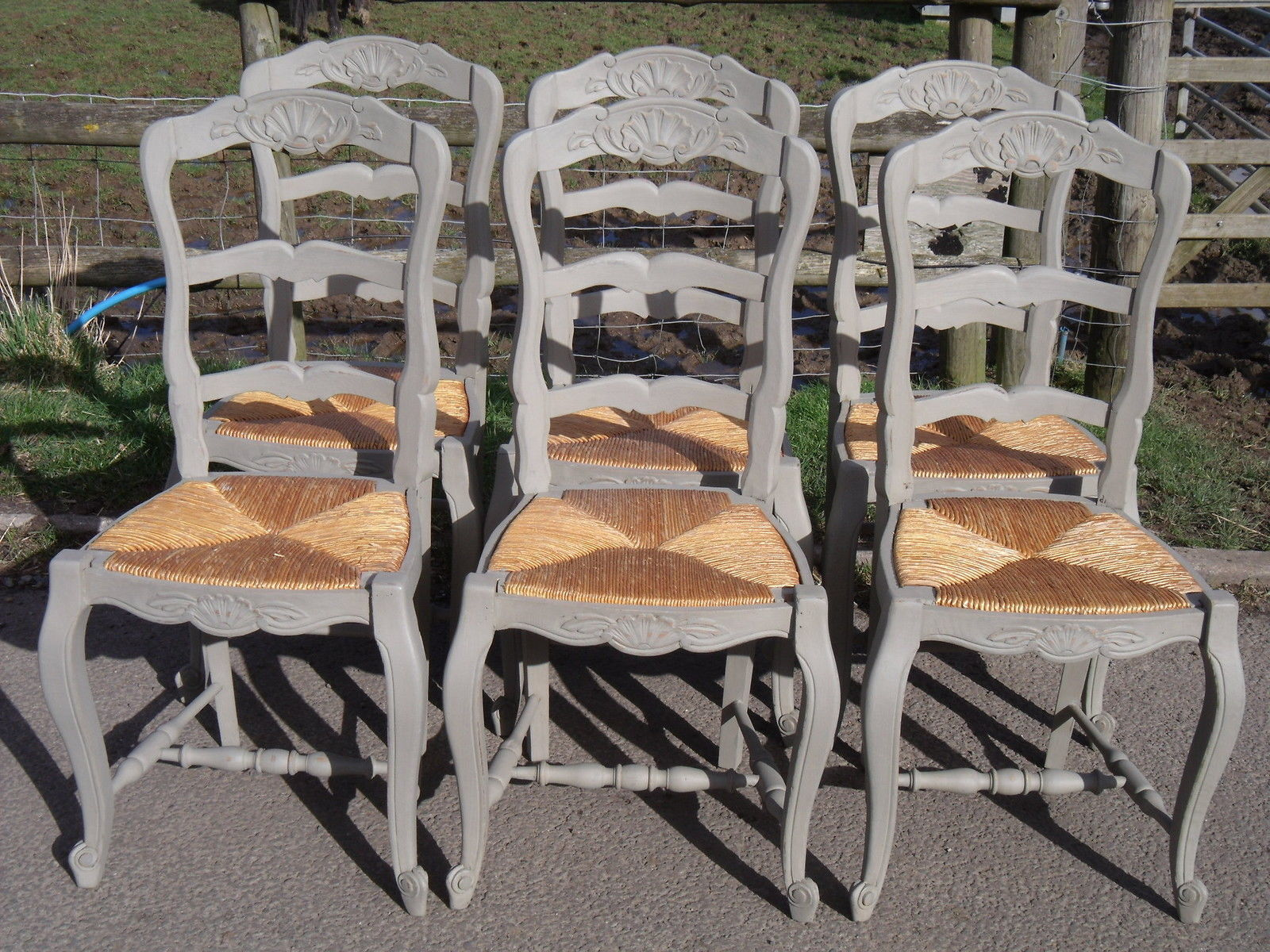 Set 6 French Painted Oak Provencal Ladderback Chairs Rush Drop In Seats